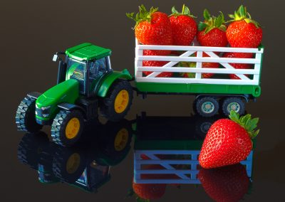 StrawberryTransport
